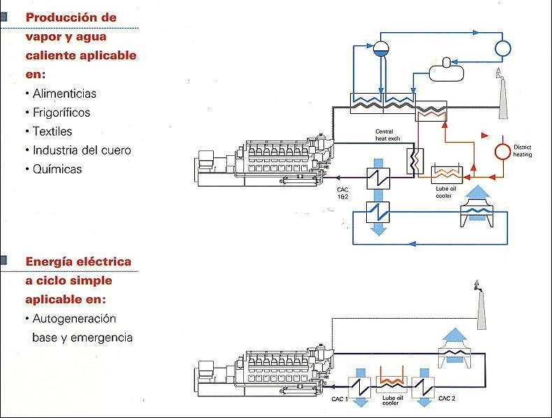 cogeneration heat and power