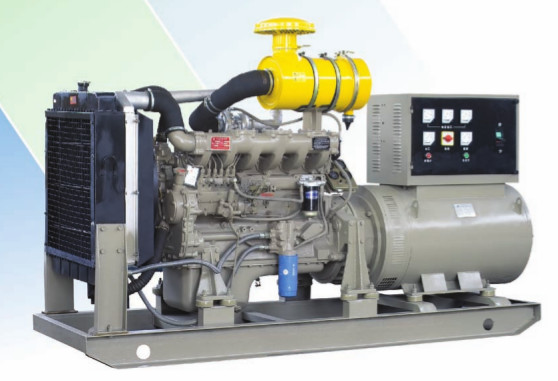 SAVOIA DIESEL GENSET on skids