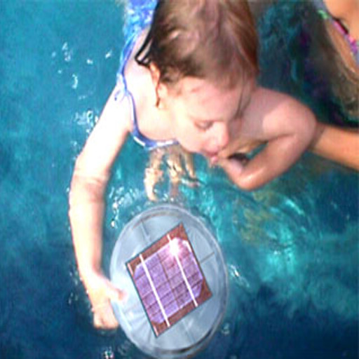 Solar PV ionizer for pools